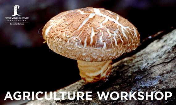 West Virginia State University Extension Service to Host Mushroom Production Workshop