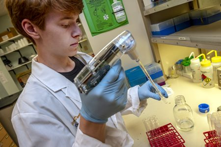 Image of student using an automatic pipette