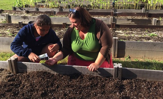 Fall Gardening, Hops Production the Focus of WVSU Extension Workshops