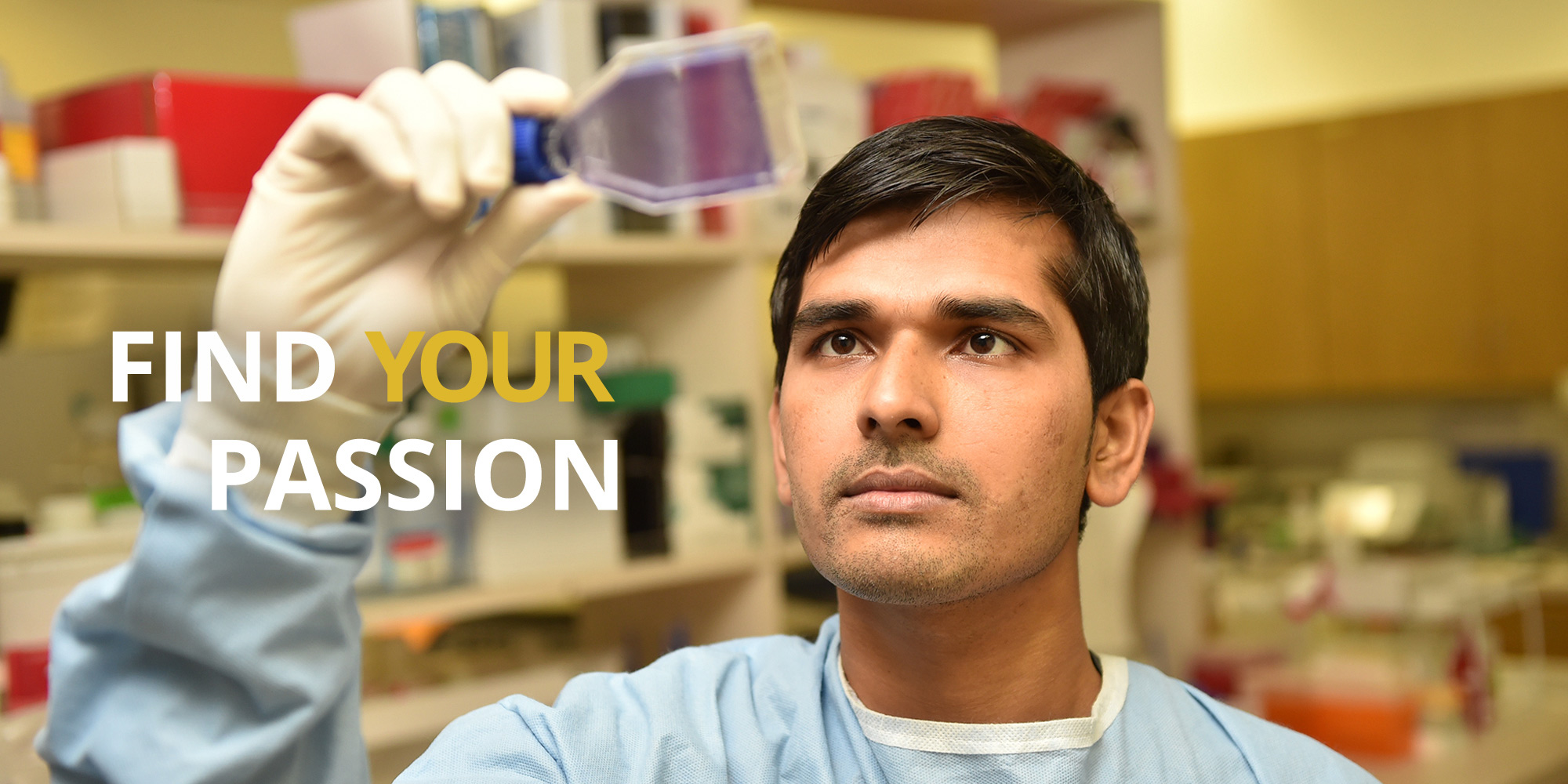 Faculty -Excellence In Teaching