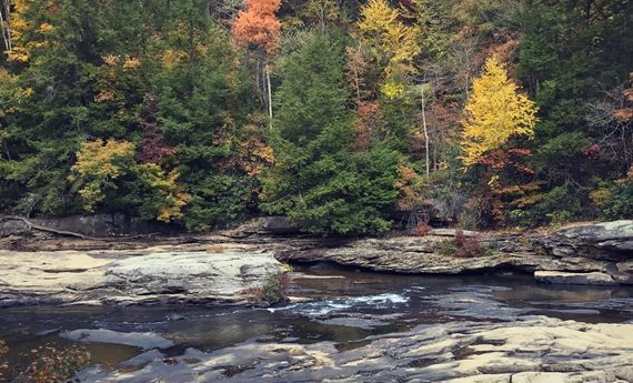 West Virginia State University and WV Project WET to Host Virtual STEM Camp for Kids