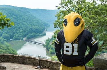 West Virginia State University Mascot Stinger.