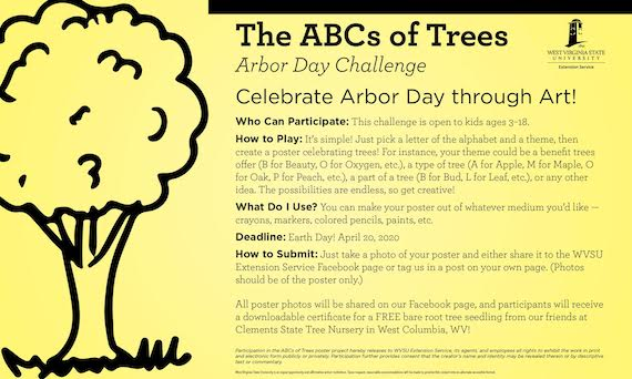 WVSU Extension Service Celebrates Arbor Day with ABCs of Trees Art Challenge